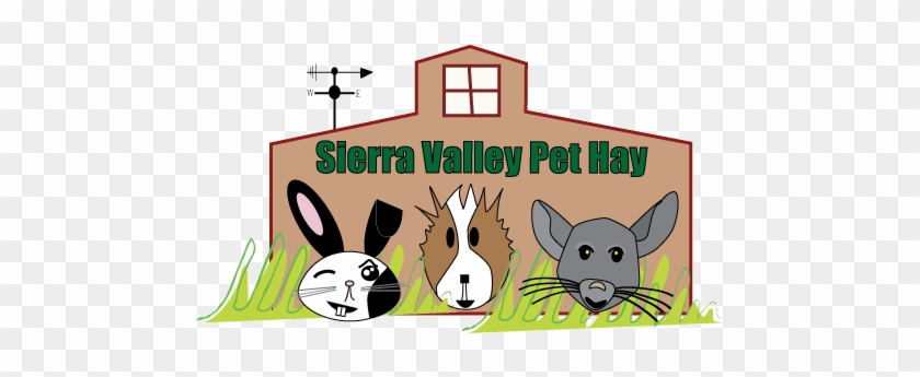 Rabbit Hay, Hay For Your Rabbit Or Other Small Pet, - Hay #877834