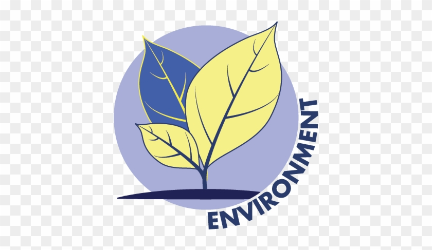 Energy Production In The United States Is The Second - Natural Environment #878605