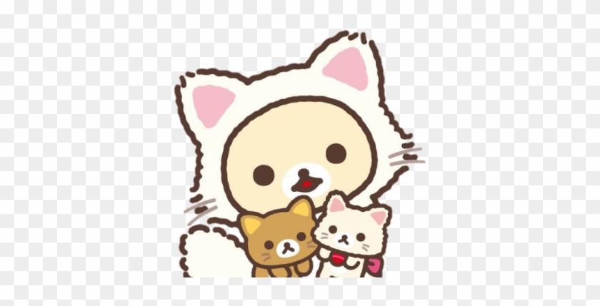 #rilakkuma #korilakkuma #cats #cute   Korilakkuma Wallpaper Iphone #878799