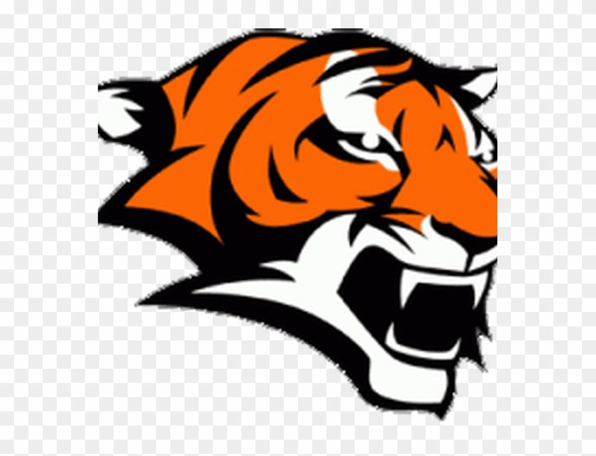 Governing Body - Marple Newtown High School Tiger #884730