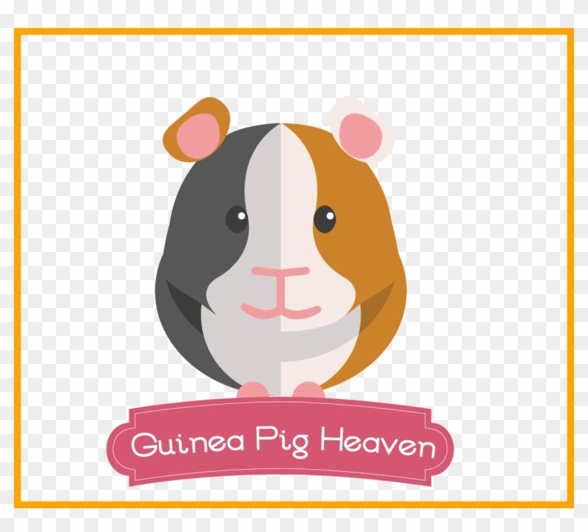 Pig Cute Cute Boy Guinea Pig Names Appealing Can Your - Guinea Pig Cartoon Png #892172