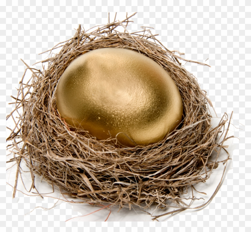 Chicken Easter Egg Nest Stock Photography - Bird Nest #892817