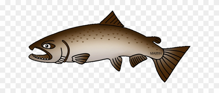 Free Clipart Salmon Jumping Collection - King Salmon Clip Art #895533
