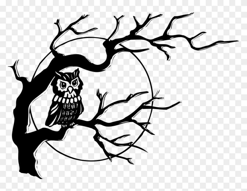 black and white owl tree with owl drawing free transparent Bear Pencil Drawings black and white owl tree with owl drawing 895563