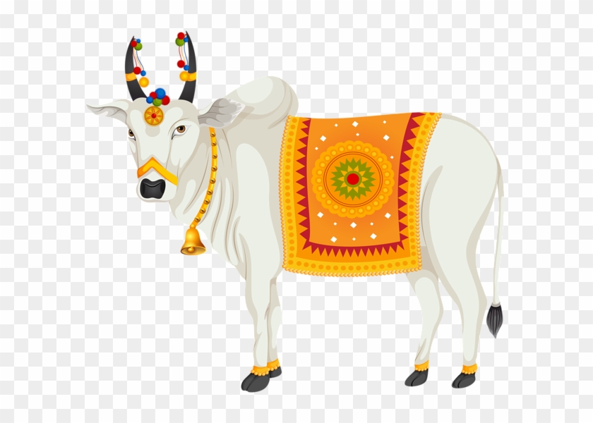 India Holy Cow Transparent Clip Art Image - Indian Cow Images Png #897578