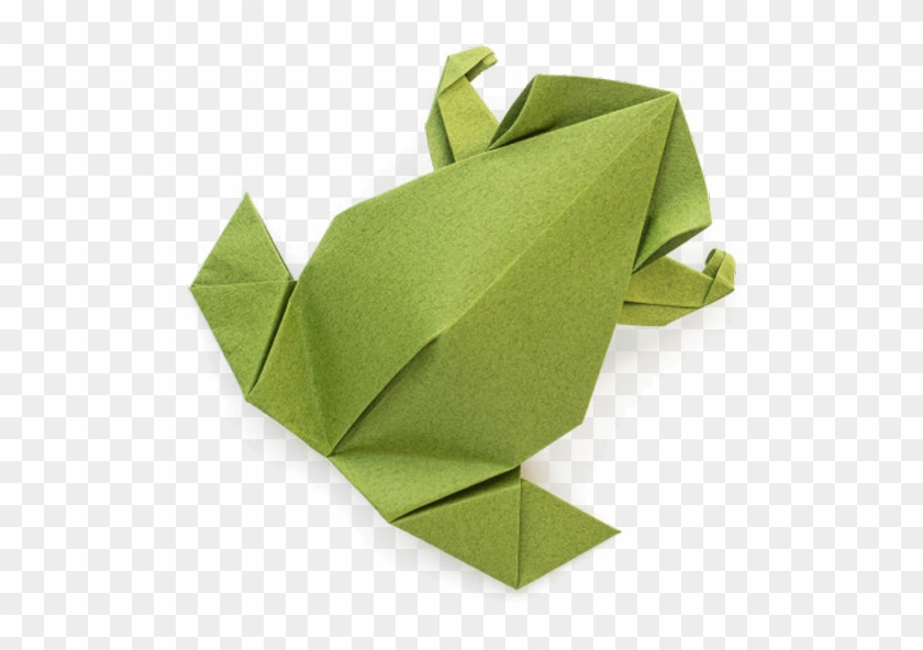 How to make a simple origami frog   Natural History Museum   592x840