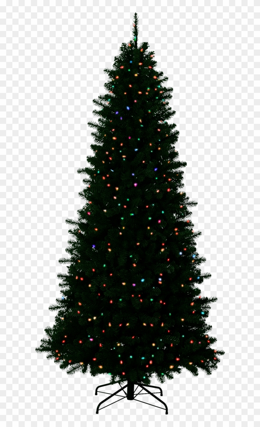 Christmas Outside Transparent Background - Christmas Tree With No ...