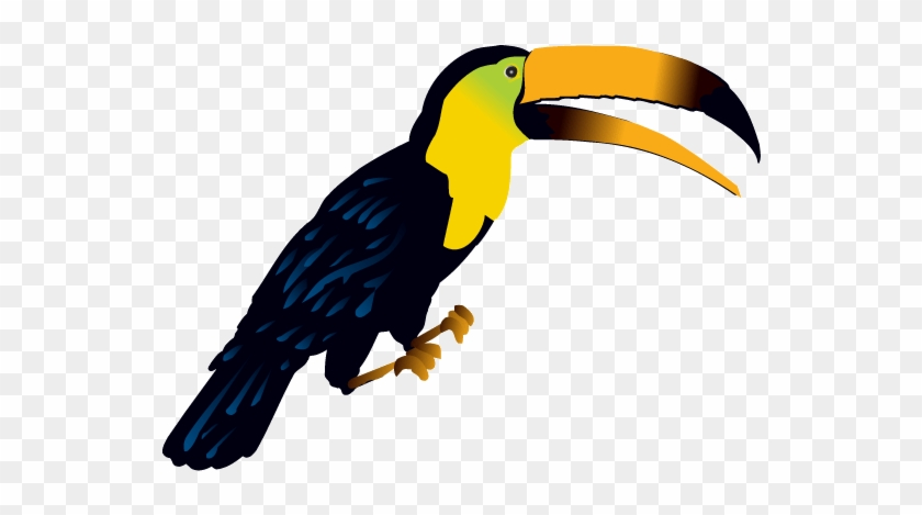 Jungle Birds Clip Art Animals Clip Art Free Transparent Png Clipart Images Download