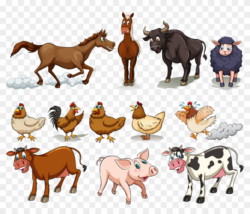 Cattle Chicken Sheep Domestic Pig Horse - Different Kinds Of Farm Animals #903116
