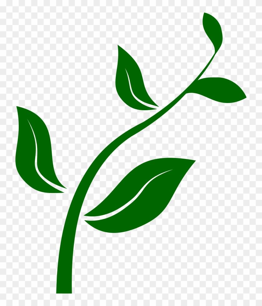 Plant Clipart - Growing Plant Clip Art #18091