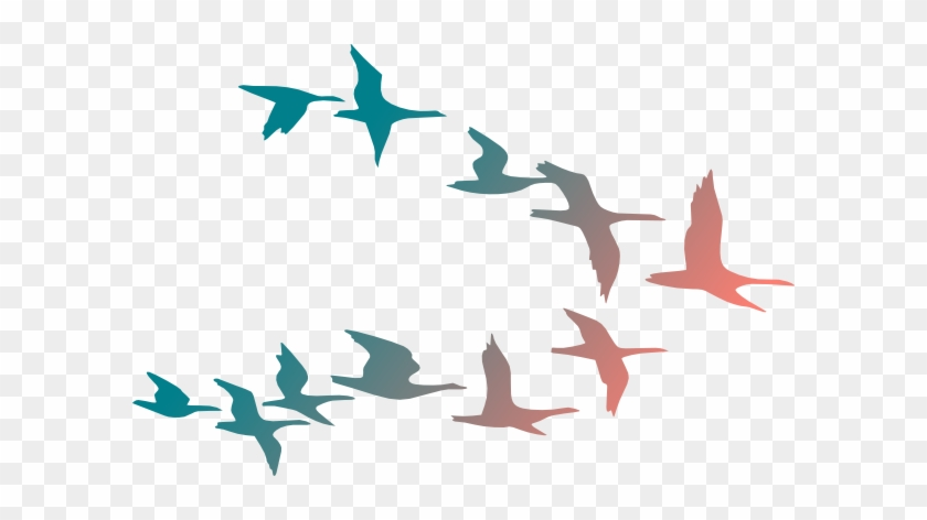 Colorful Birds Flying Clipart #18105