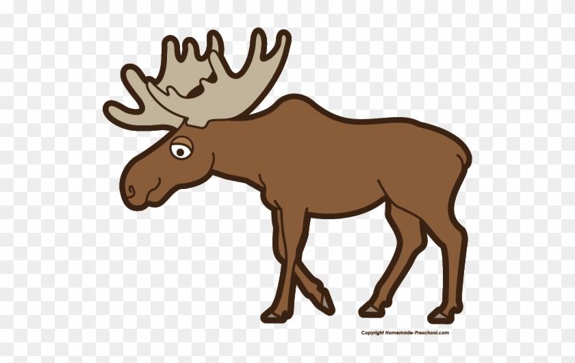 Free Moose Clipart - Clip Art Of A Moose #18116