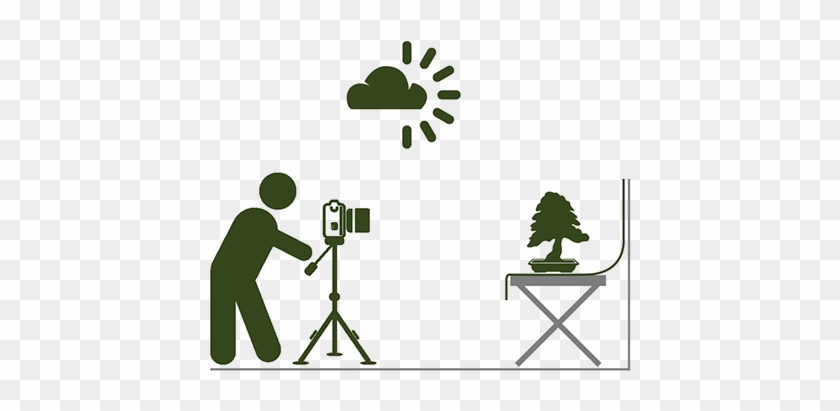 Place The Tree Against A Neutral Background - Camera Vector Side View #18259