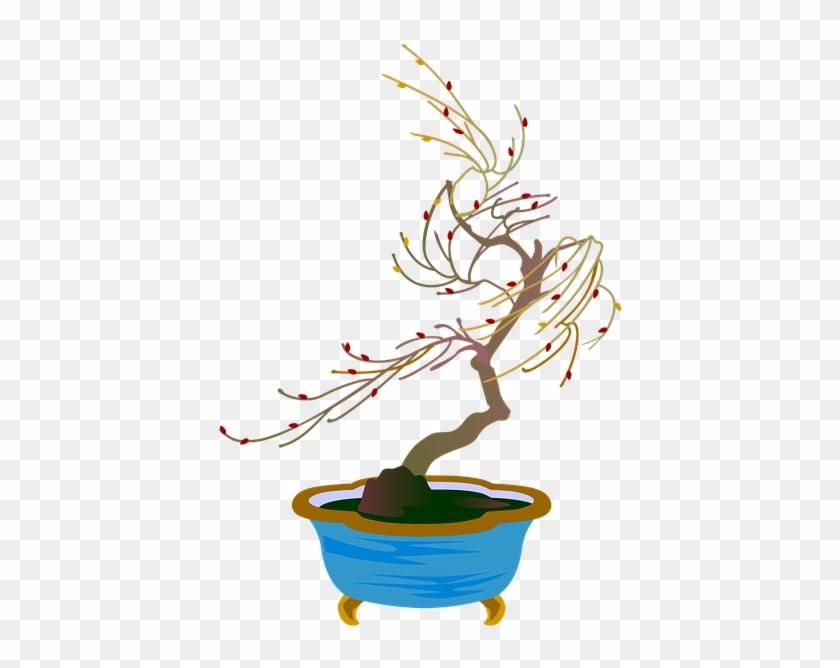 Bonsai #18334