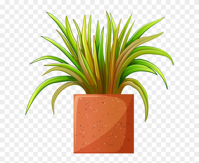Clip Art Of Beautiful Plants For The Spring Garden - Clipart A Potted Plant #18346