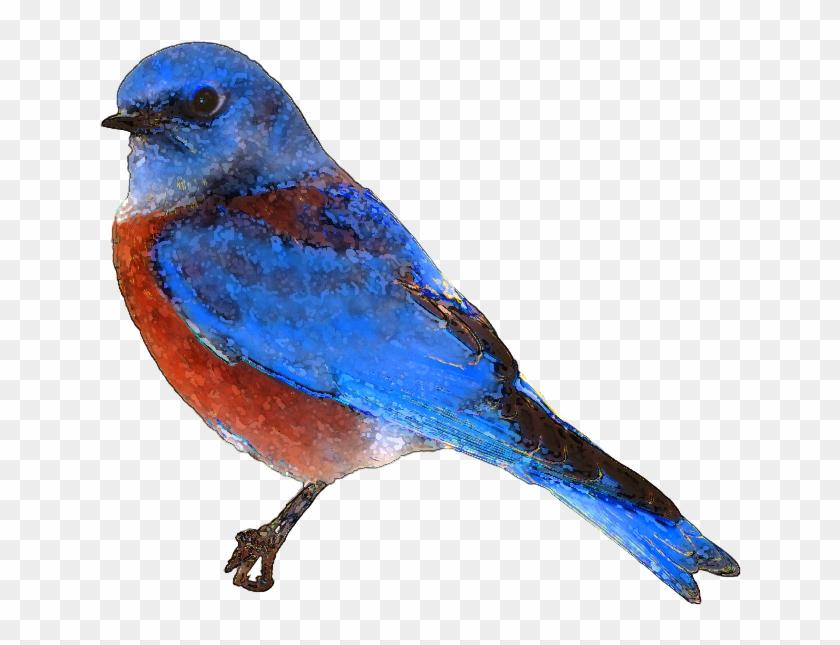 Blue Bird Clipart Png - Bluebird Clipart #18349
