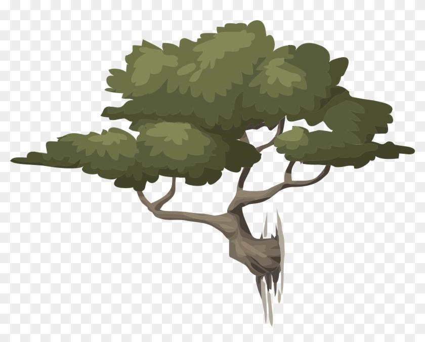 Medium Image - Free Illustration Coppiced Woods Trees Free #18453