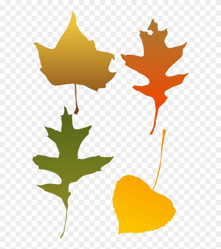 Autumn Leaves - Blade I Efterår Transparent #18547