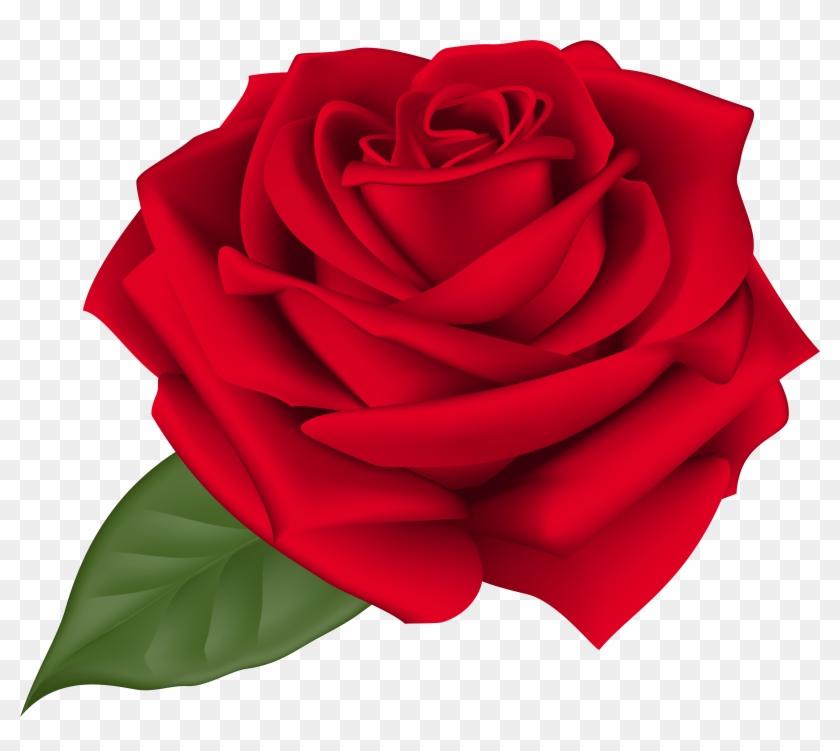 Rose Red Transparent Png Clip Art Imageu200b Gallery - Rose Red Transparent Png Clip Art Imageu200b Gallery #18681
