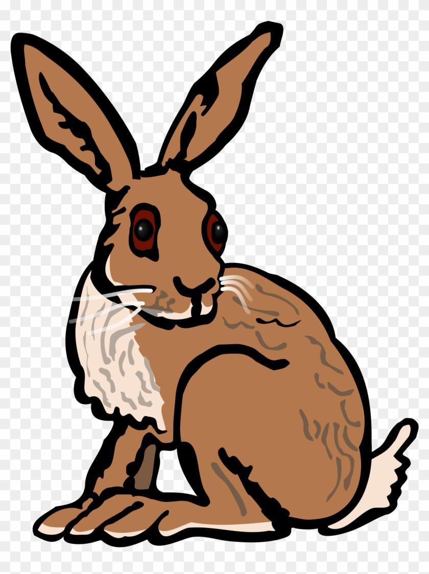 Hare Clip Art - Hare Clipart #18674