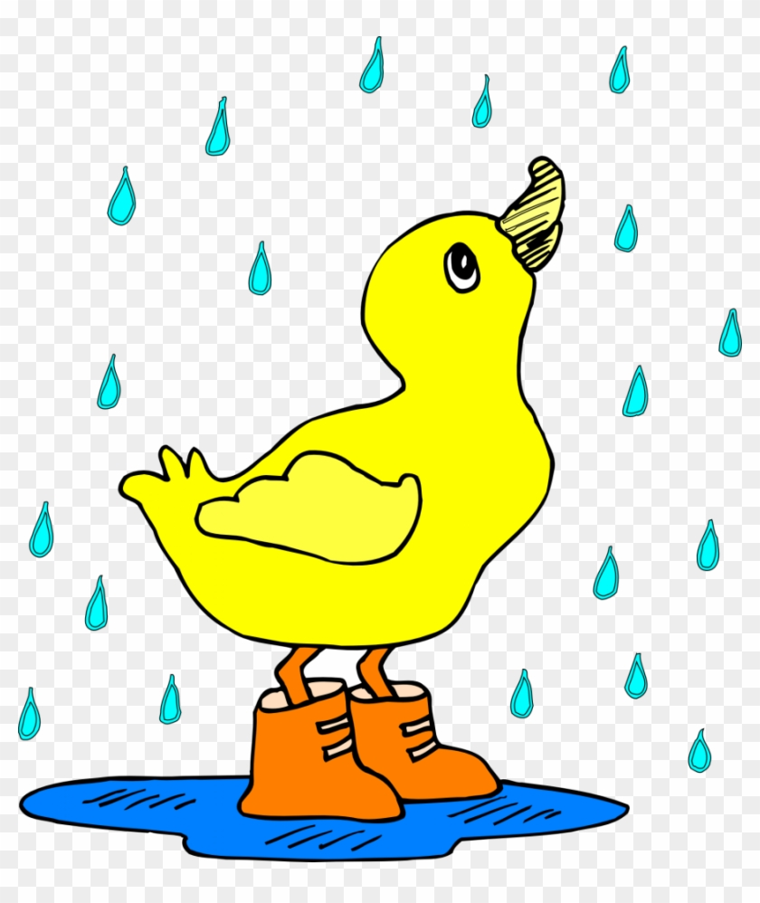 Duck In Rain Boots #18929