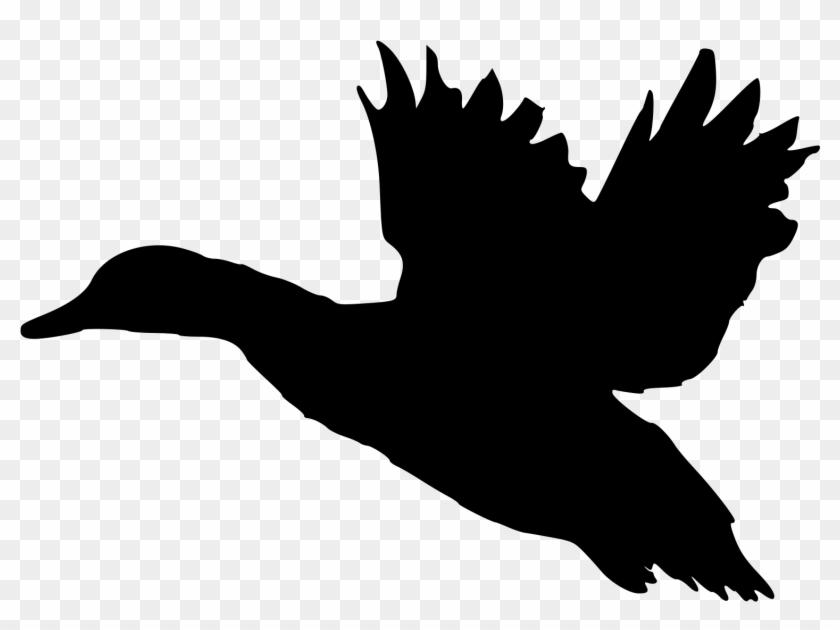 Fileduck Sotka1 - Flying Duck Silhouette Clip Art #19071