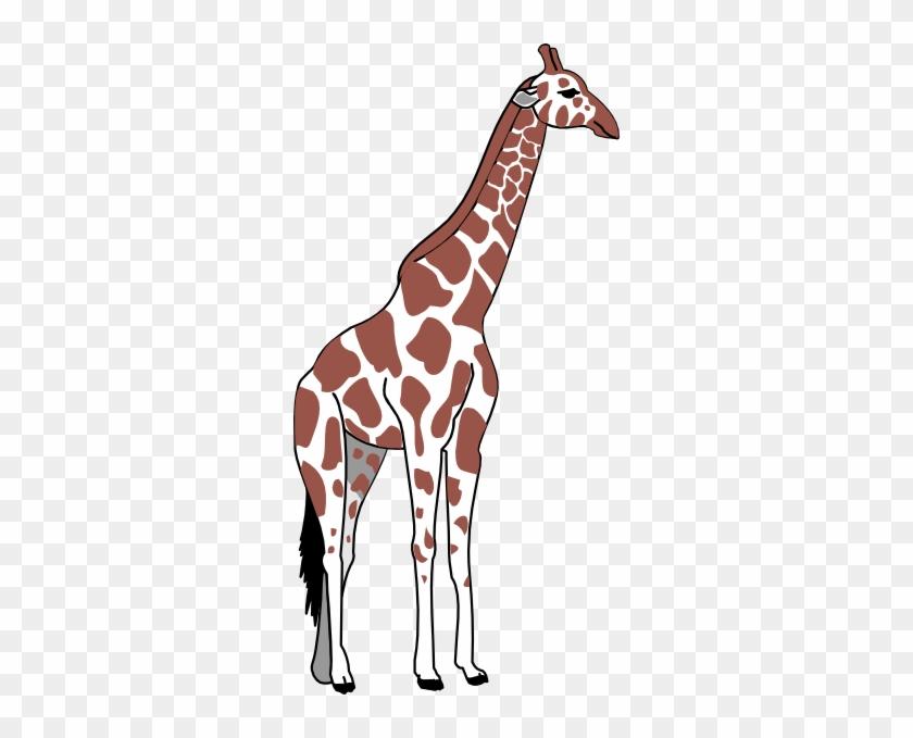 Giraffe Pillow Case #19241