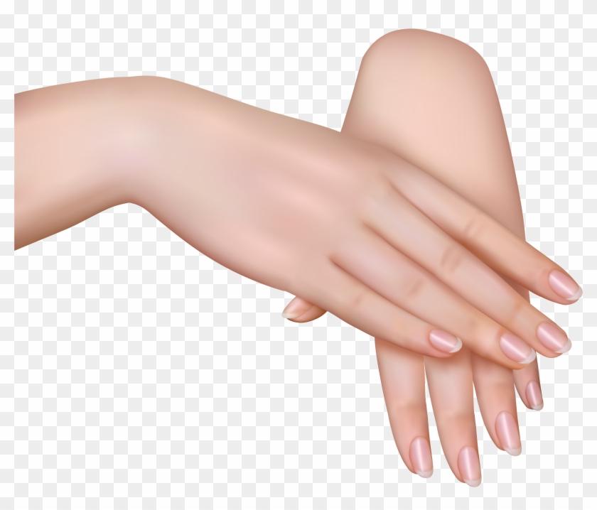 Hand Clip Art - Hand Clip Art #20040