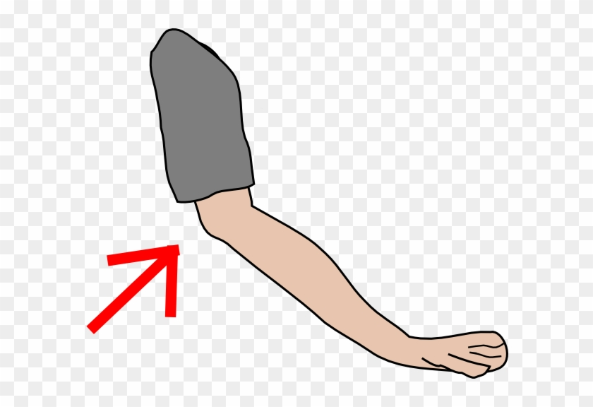 Elbow Clipart Png #19465