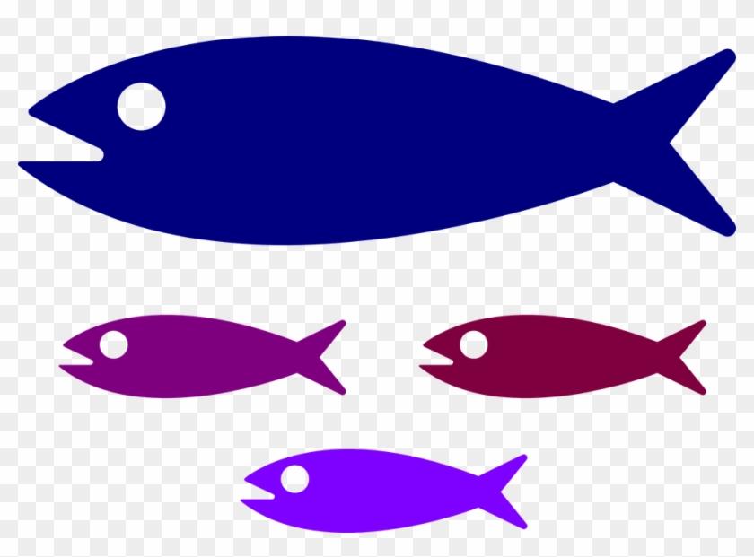 Small Medium Large Fish #19490