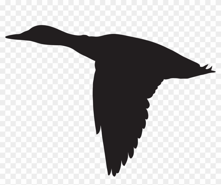 Duck Flying Silhouette Png Clip Art Image - Duck Flying Silhouette Png Clip Art Image #19567