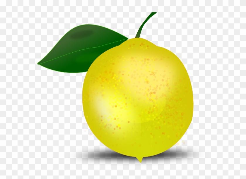 Lemon Clipat #19768
