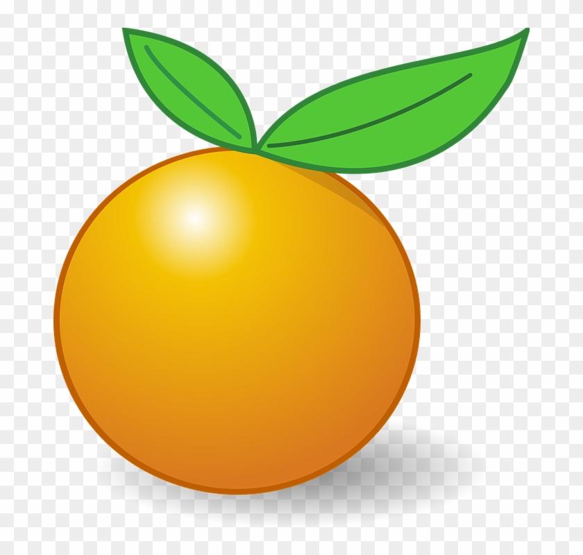 Citrus Clipart Orange Fruit - Gambar Buah Jeruk Kartun #19829