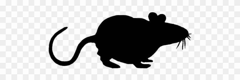Mouse Clipart Silhouette - Mouse Silhouette Transparent Background #20013