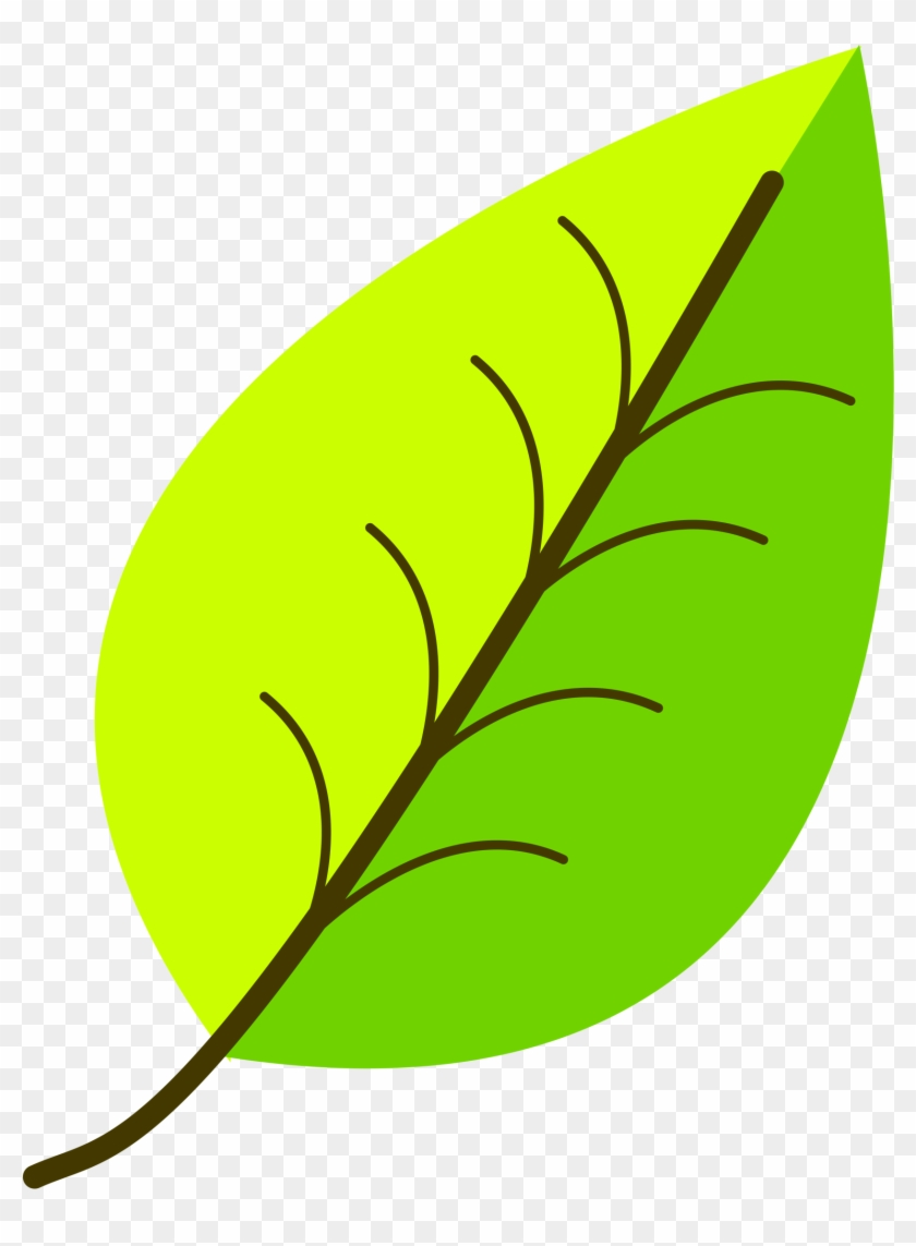 Leaf- With Venation, Two Color - Leaf Clipart Png #20146