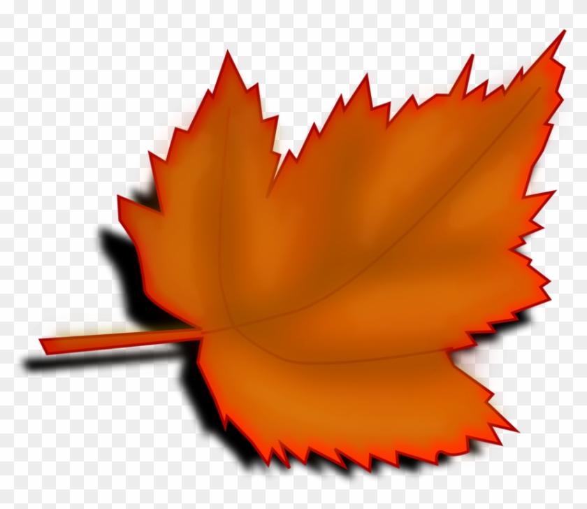 Leaf - Clipart - Tree Leaves Clip Art #20159