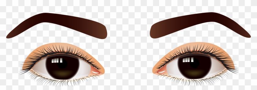Female Brown Eyes Png Clip Art - Brown Eyes Png #20307