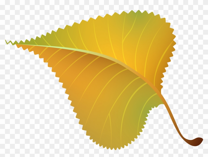 Fall Yellow Leaf Png Clipart Image - 40th Class Reunion #20535