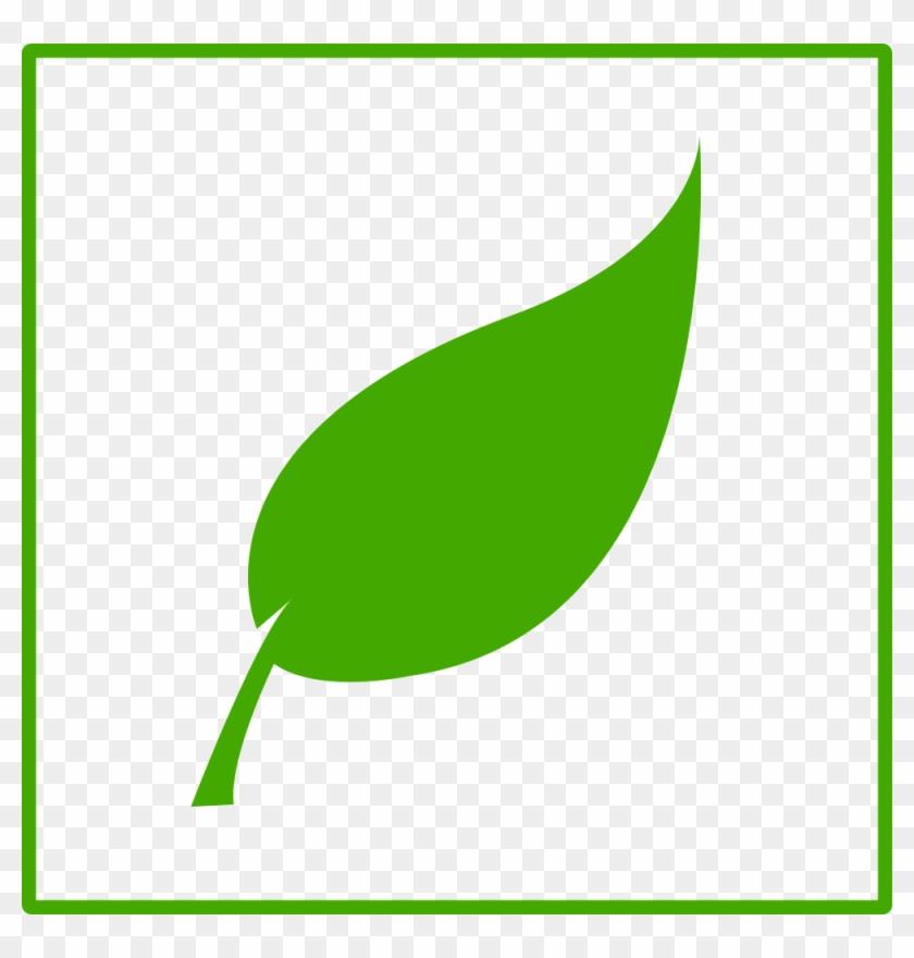 Free Eco Green Leaf Icon - Mint Leaf Clip Art #20548