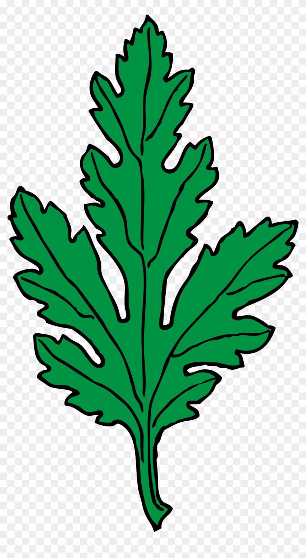 Big Image - Green Leaf Clip Art #20554