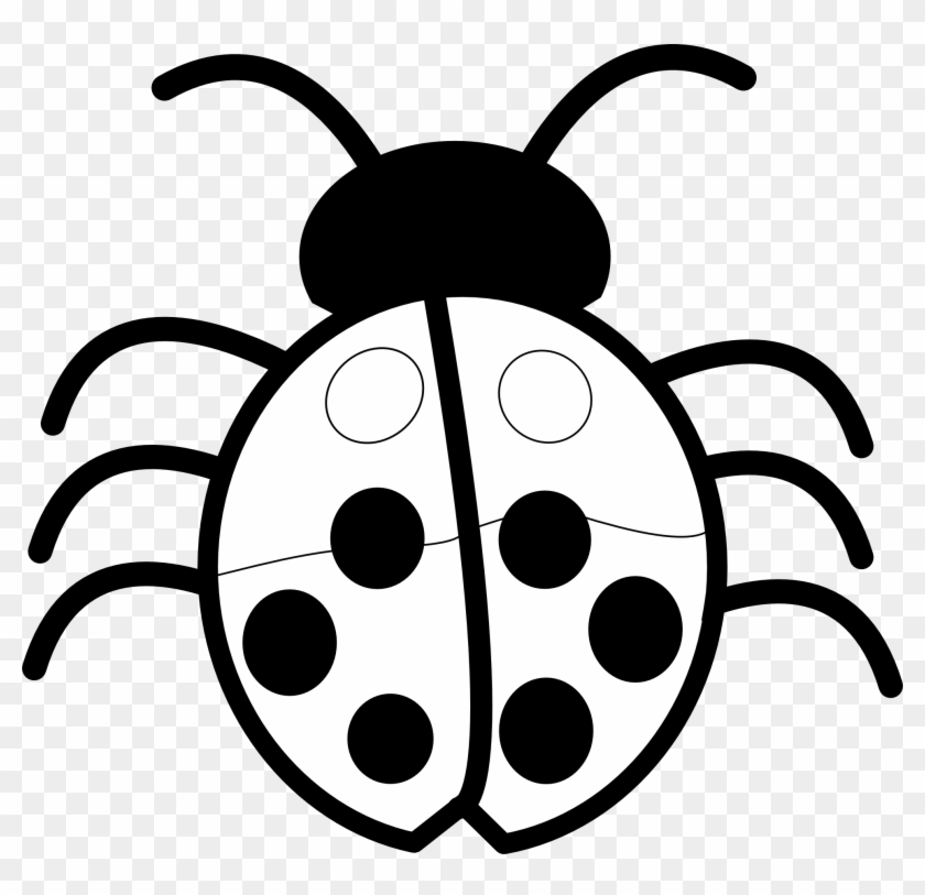 Bugs Image Free Pictures Bug Clip Art Image - Clipart Of Flowers Black And White #20579