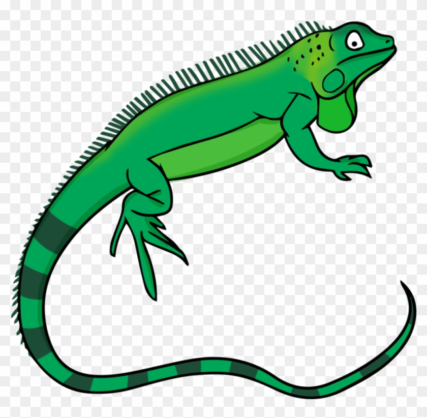 Lizard Clipart Free To Use Public Domain Lizards Clip - Iguana Clip Art #20638