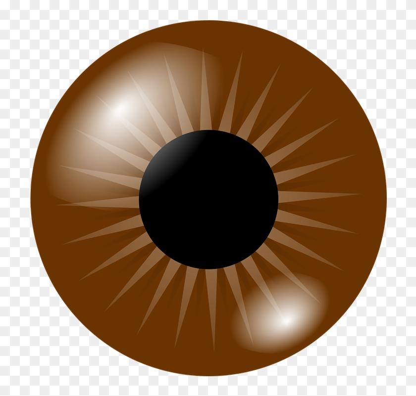 Brown Eye Clip Art At Clker - Brown Eye Clipart #20680