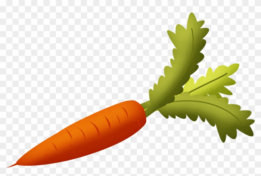 Carrot With Green Leaves Clipart Isolated Stock Photonobacks - Carrot Png #20688