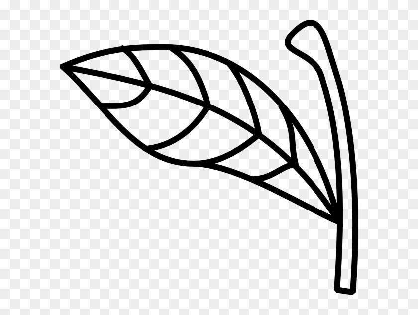 Apple Stem And Leaf #20734