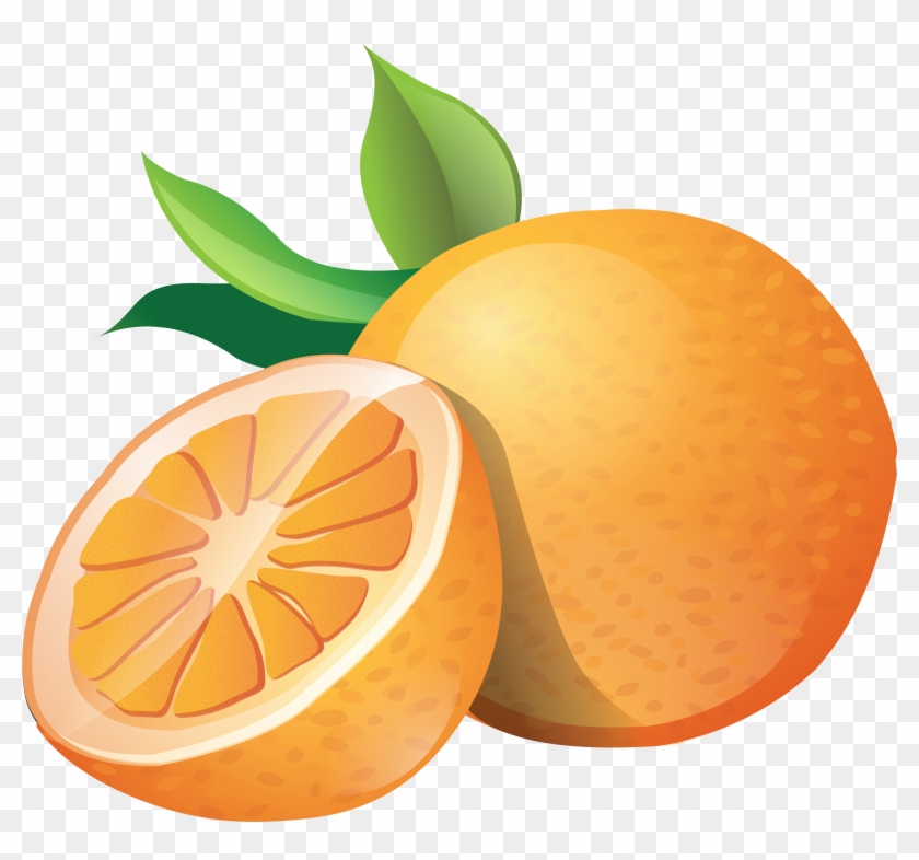 Clipart On Oranges Clipart Collection - Orange Clipart Png #20779