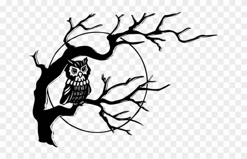Tree-061 - Owl On A Tree Drawing #21066
