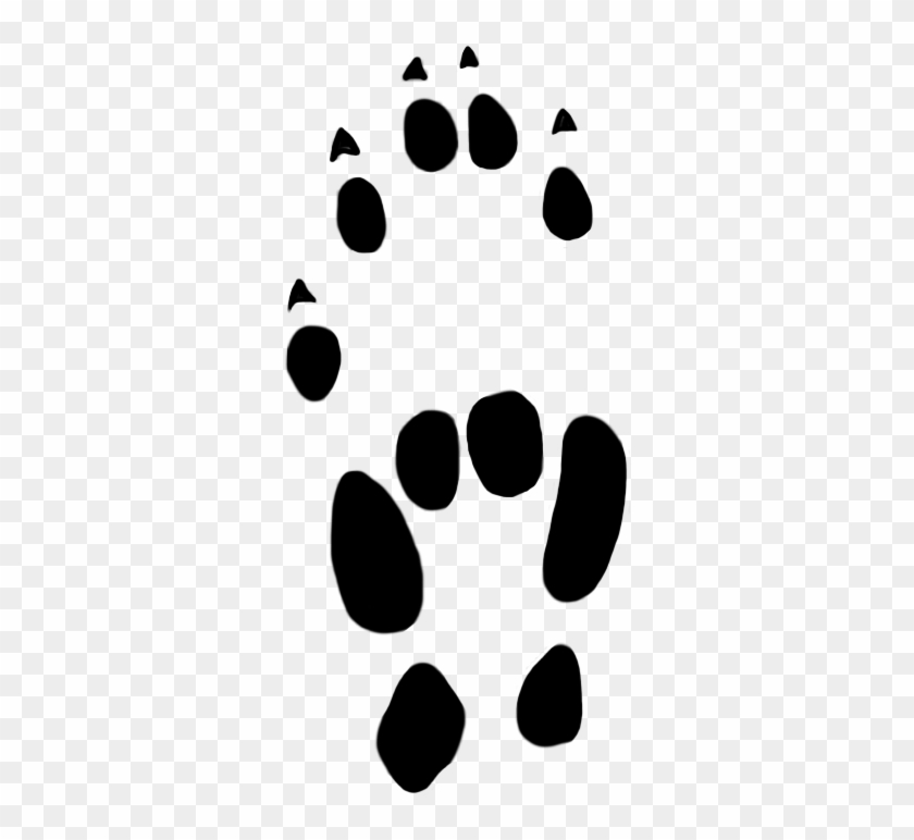 Stoat Paw Prints Clipart 22 Mm - Stoat Paw Prints Clipart 22 Mm #21664