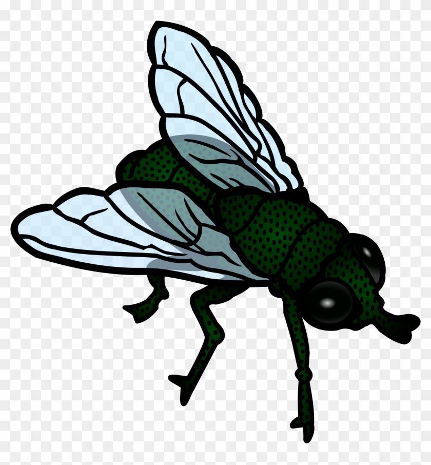 Fly Clip Art - Fly Clipart Png #22214