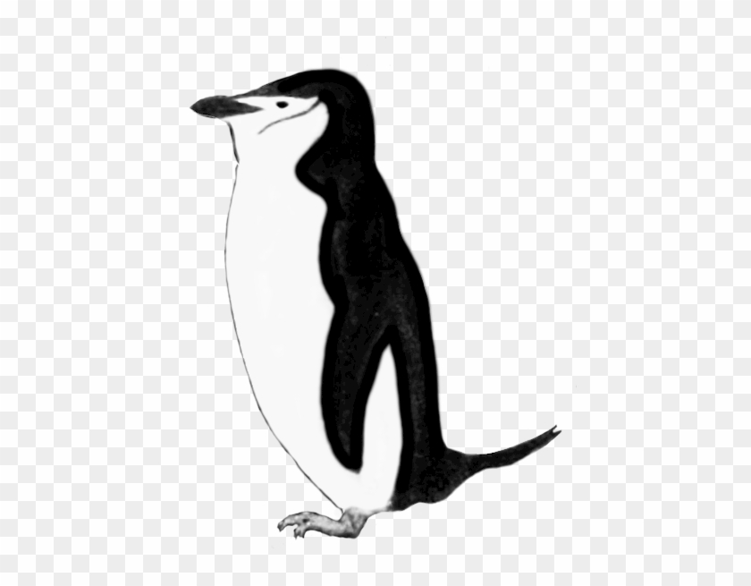Penguin Clip Art Black And White - Clip Art #22501